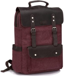 PC carrying backpack