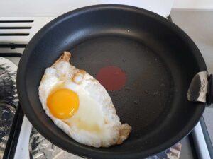 frid egg